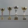 SVOČ 2009 - poháry pro oceněné